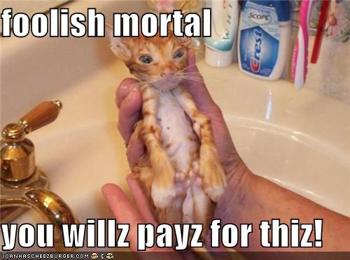 foolish mortal  you willz payz for thiz!