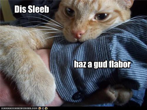 Dis Sleeb