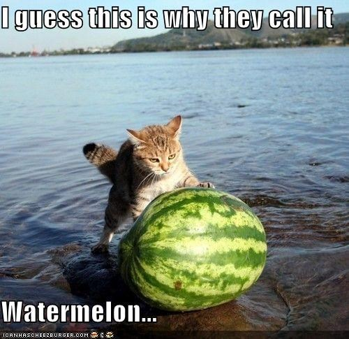 I guess this is why they call it  Watermelon...