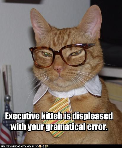 Executive kitteh is displeased with your gramatical error.
