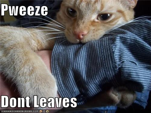 Pweeze  Dont Leaves