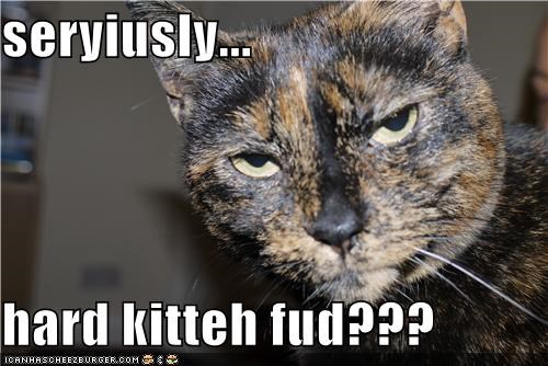 seryiusly...  hard kitteh fud???