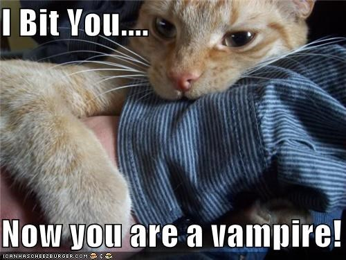 I Bit You....  Now you are a vampire!