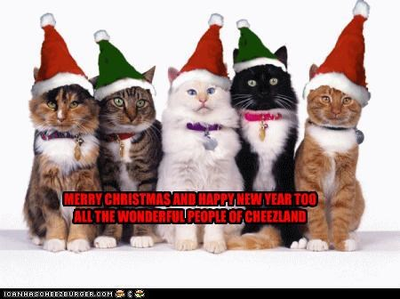 MERRY CHRISTMAS AND HAPPY NEW YEAR TOO ALL THE WONDERFUL PEOPLE OF CHEEZLAND