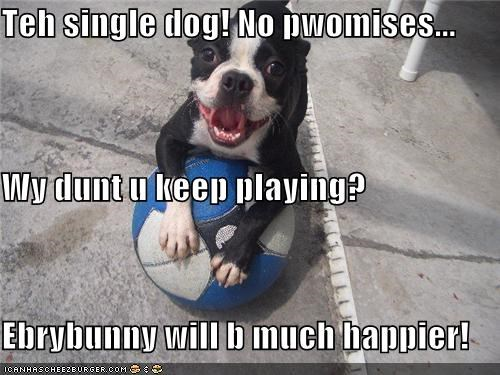 Teh single dog! No pwomises... Wy dunt u keep playing? Ebrybunny will b much happier!