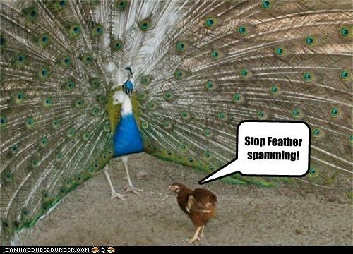 Stop Feather spamming!