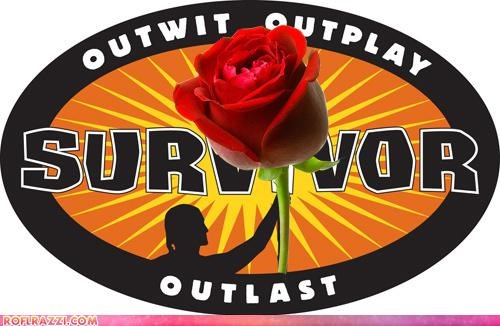 Survivor + Bachelor = Romance?