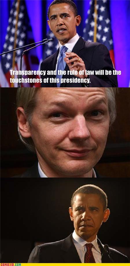 first amendment,julian assange,obama,politics,terrorists,the internets,wikileaks