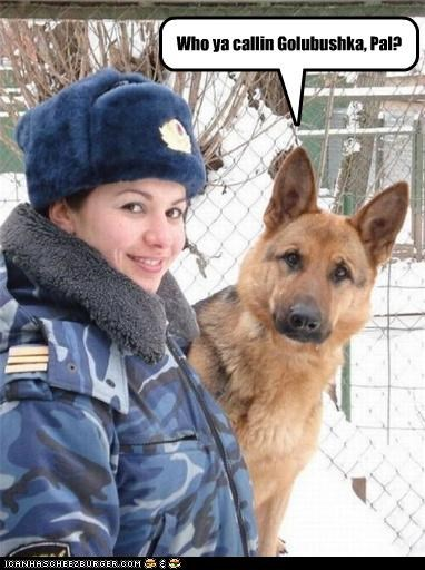 In Russia, Police Dogs are VERY loyal.
