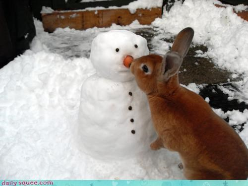 acting like animals,apologies,bunny,carrot,game,i got yer nose,nose,prank,reminiscing,snowman,trick
