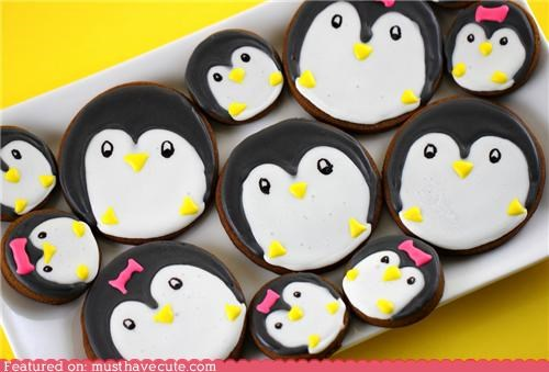 black and white,cookies,epicute,fat,lazy,penguins,pink bows,round