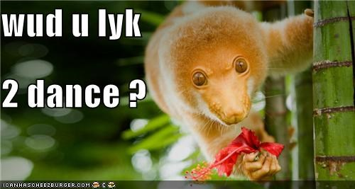 wud u lyk 2 dance ?
