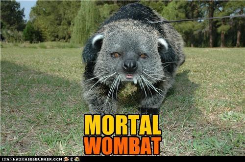 all caps,caption,captioned,exclamation,mortal,mortal combat,rhyming,Wombat