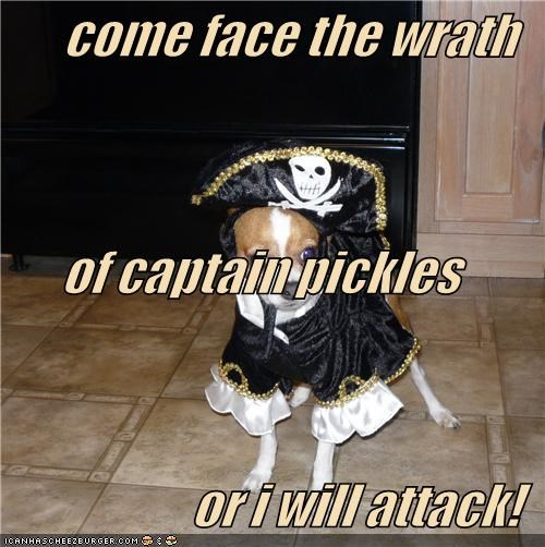 come face the wrath of captain pickles or i will attack!