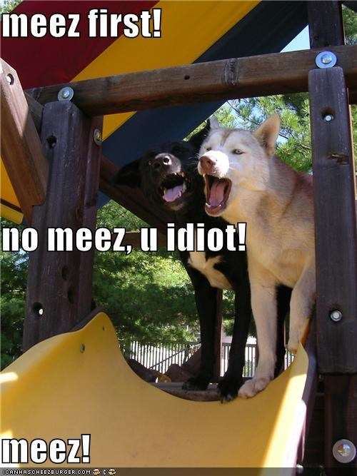 meez first! no meez, u idiot! meez!