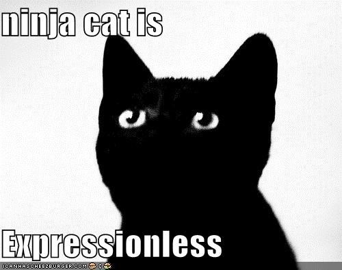 ninja cat is  Expressionless