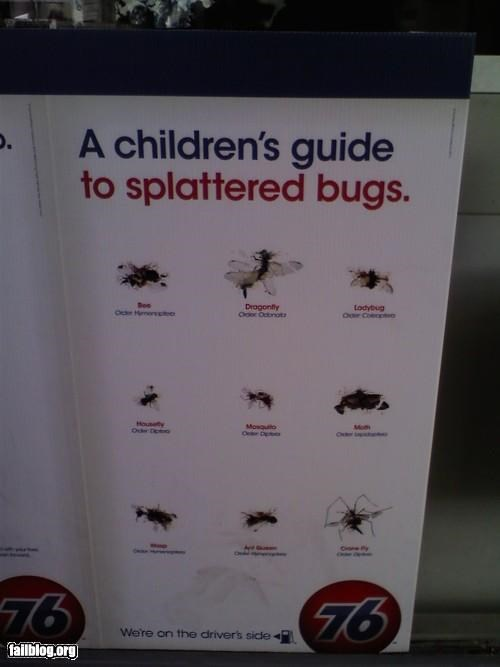 Oddly Specific: Children's Bug Chart