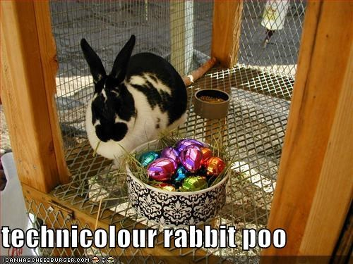 technicolour rabbit poo