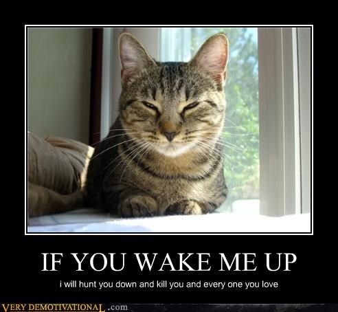 IF YOU WAKE ME UP
