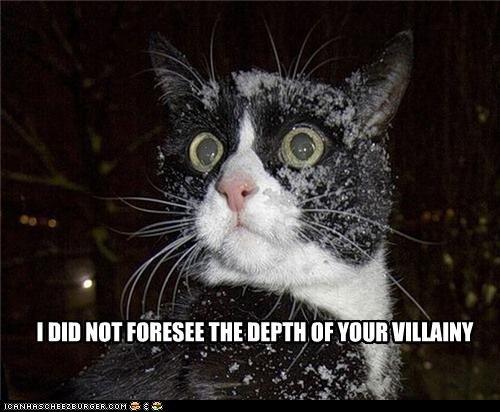 caption,captioned,cat,depth,do not want,indignant,shocked,snowball,unhappy,villain,villainy