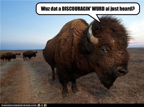 buffalo,caption,captioned,discouraging,home on the range,interrogating,lyrics,question,upset,word