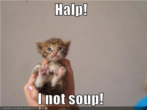 Halp!  I not soup!