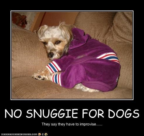 NO SNUGGIE FOR DOGS