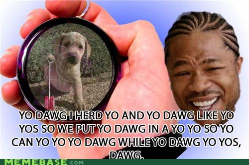animemes,dogs,old sauce,Xzibit,yo dawg,yo yo