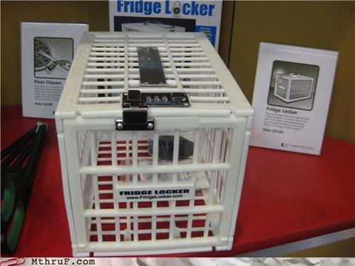 cage,lock,refrigerator,thief,trap
