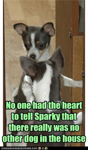 No one had the heart to tell Sparky that there really was no other dog in the house