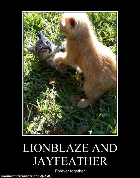 LIONBLAZE AND JAYFEATHER