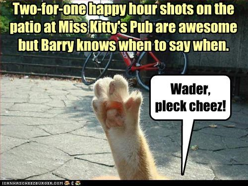 Two-for-one happy hour shots on the patio at Miss Kitty's Pub are awesome  but Barry knows when to say when.