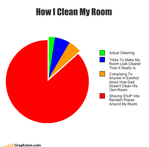 cleaning,hiding,Pie Chart,room,wrapping paper