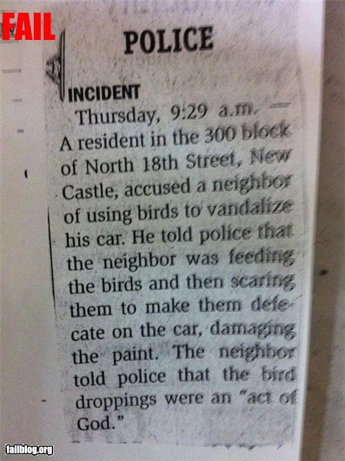 birds,failboat,g rated,newspaper,vandalizing