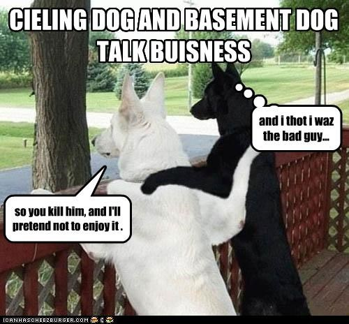 CIELING DOG AND BASEMENT DOG TALK BUISNESS