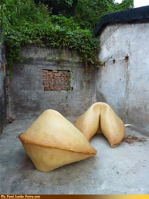 Funny Food Photos - Giant Fortune Cookies