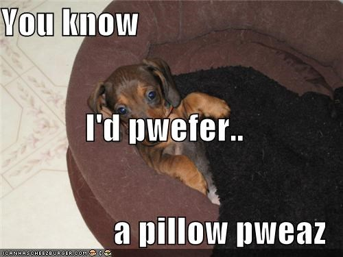 You know I'd pwefer.. a pillow pweaz