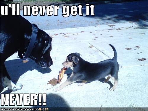 u'll never get it  NEVER!!