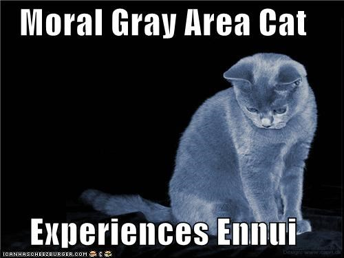 Moral Gray Area Cat  Experiences Ennui