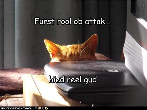 attack,caption,captioned,cat,first,good,hide,really,rule,step one,tabby
