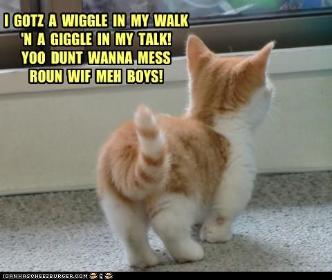boys,caption,captioned,cat,dont-mess,giggle,i has,kitten,my,tabby,talk,walk,walking,warning,wiggle