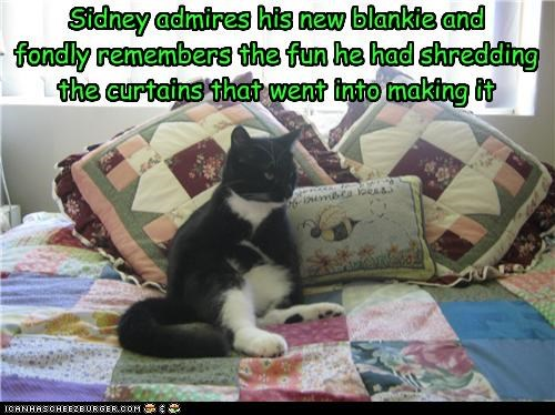 Sidney admires his new blankie