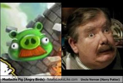 Mustache Pig (Angry Birds) Totally Looks Like Uncle Vernon (Harry Potter)