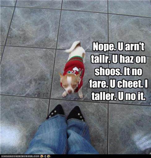Nope. U arn't tallr. U haz on shoos. It no fare. U cheet. I taller. U no it.