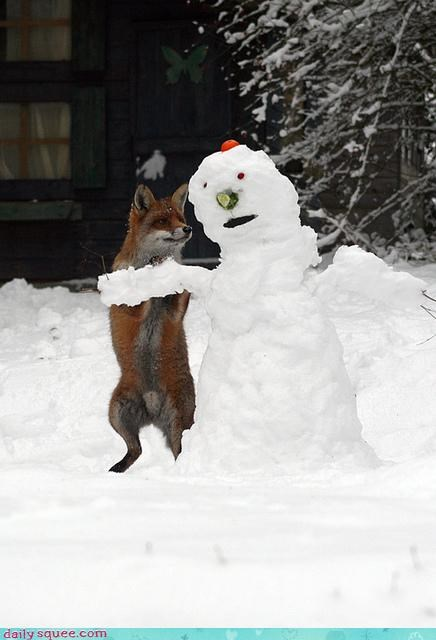 acting like animals,delicious,flirting,food,fox,noms,nose,pickup line,question,snowman