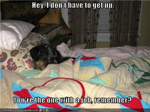 Hey, I don't have to get up.  You're the one with a job, remember?