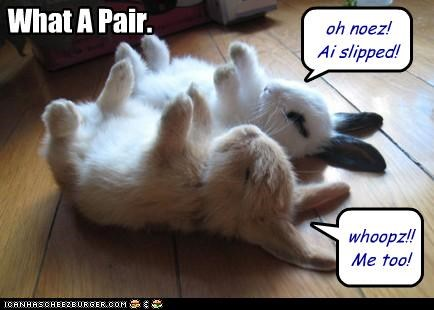 But... you said you wanted Bunny Slippers!