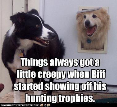 border collie,creepy,dog door,golden retriever,head,hunting,showing off,trophies