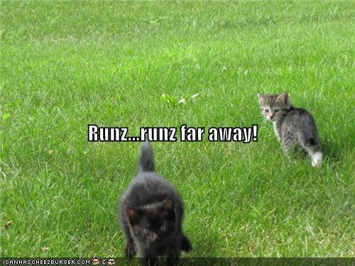 Runz...runz far away!