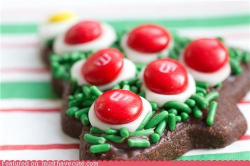 Epicute: Chocolate Tree Cookies